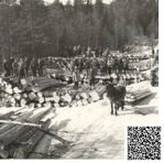 """Hellosvelta var ein velteplass for tømmer som skulle fløytast ned Bøelva. Tømmer blei kjørt hit med hest og slede på vinterføre, tørka i flakvelter og """"landkasta"""" når vårflaumen kom. På digitaltmuseum.no kan ein finne bilete frå tømmerarbeid på 1950-talet i Telemark."""