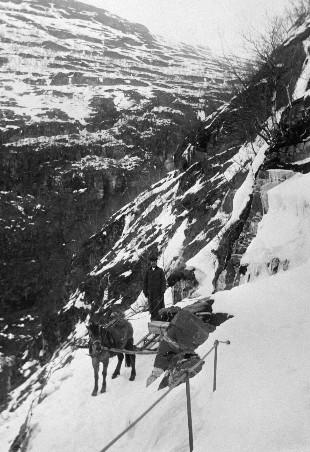 Hest med lass på anleggsvegen i Flåmsdalen 1908.